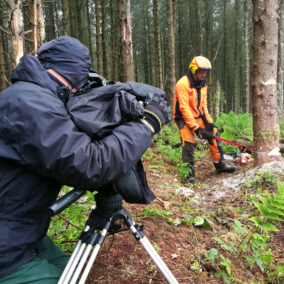 Camera on a tripod filming a video of a man chopping down a tree in a forest