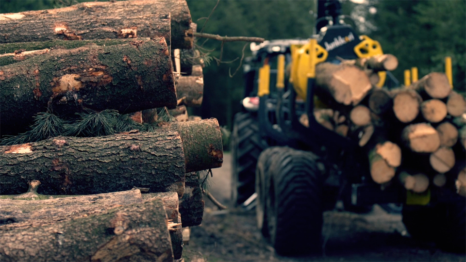A tractor carried wooden logs through a forest at TKF Training